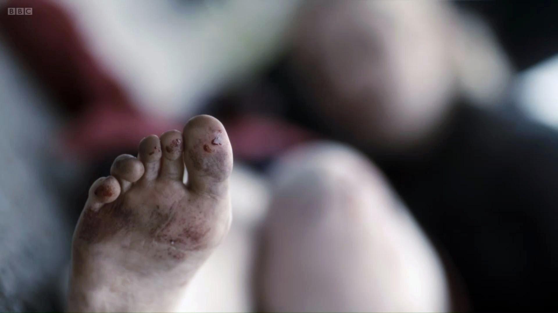 Amy Wren amy wren's feet << wikifeet