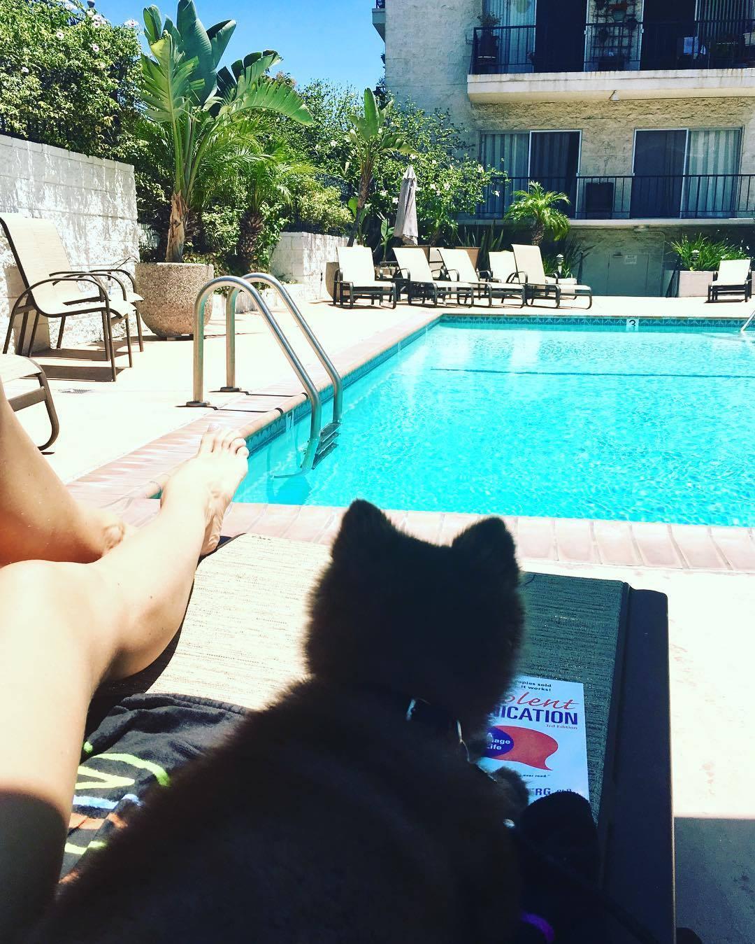 Feet AnastFeetija Makarenko naked (61 photos), Pussy, Fappening, Feet, in bikini 2017