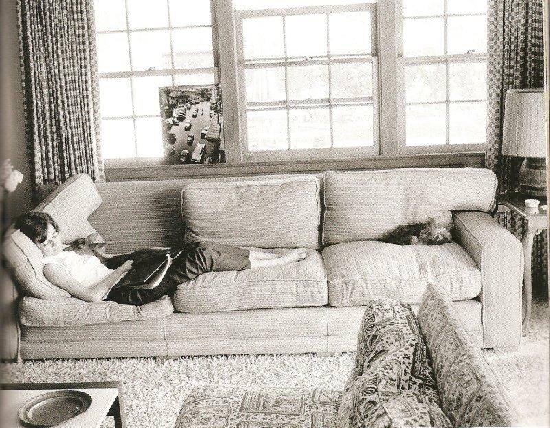 800 x 623 id 805812. Black Bedroom Furniture Sets. Home Design Ideas