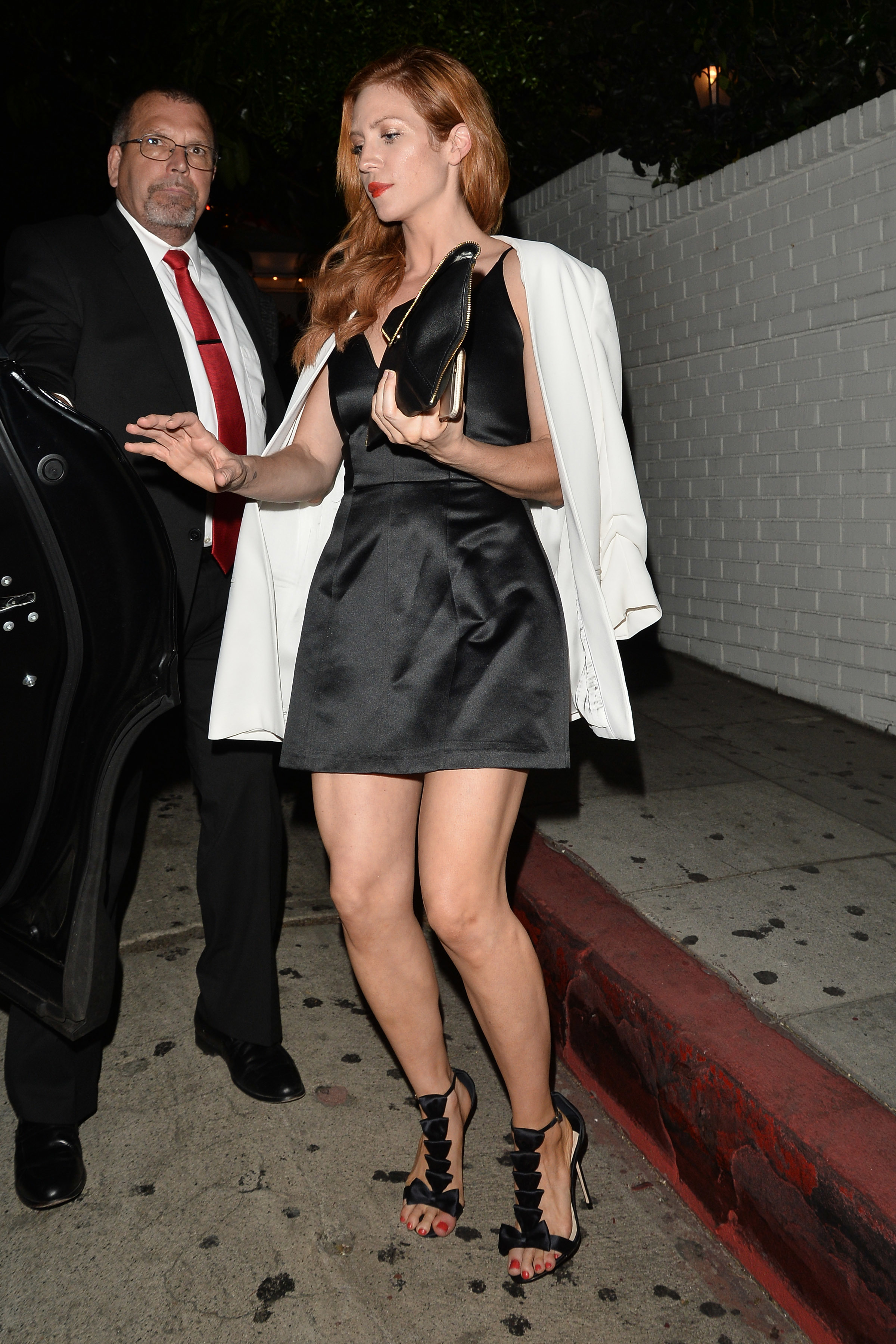 Brittany snow legs — img 7
