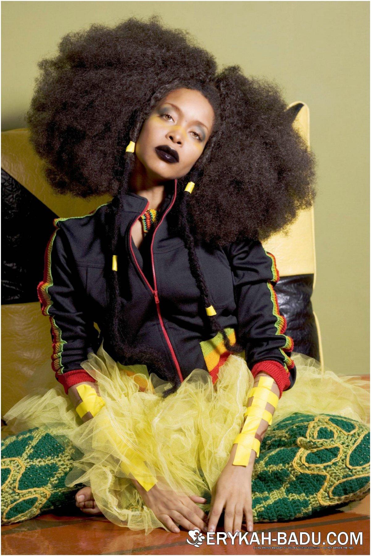 Erykah Badu Natural Hair