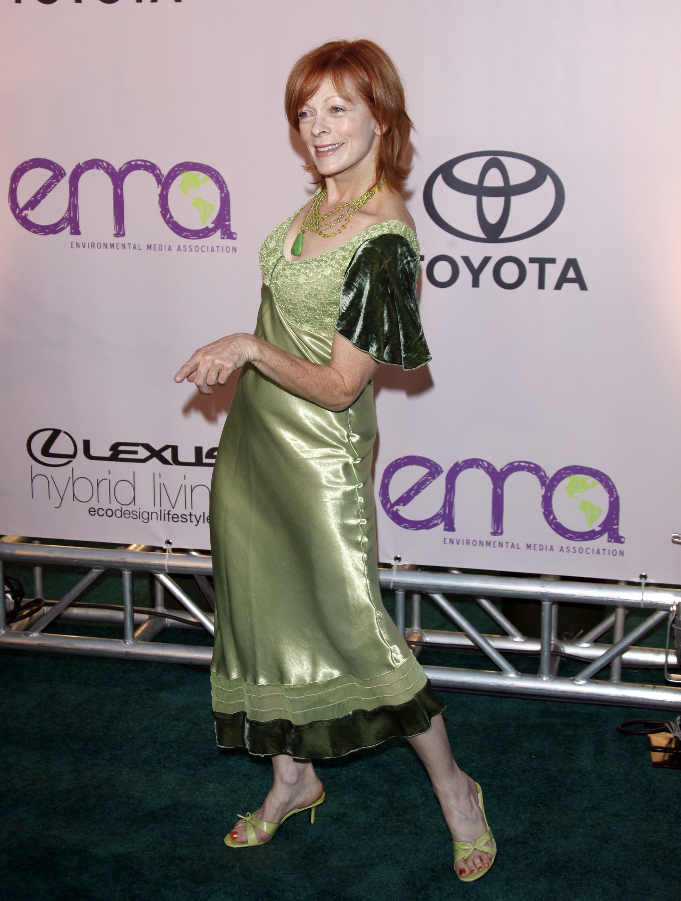 frances fisher age