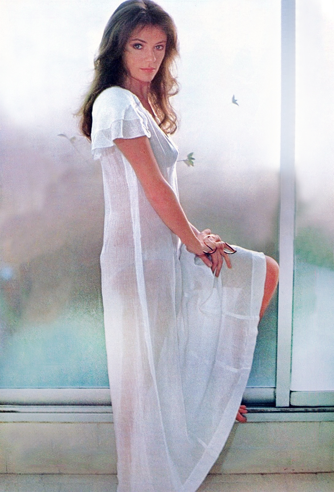 Jacqueline Bisset en 2018