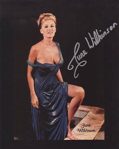 June Wilkinson's Feet << wikiFeet