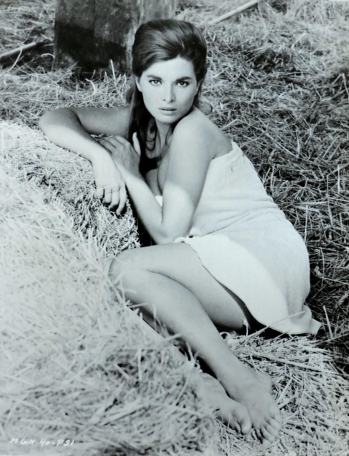 Sharon McMurtry,Justis Bolding Porno tube Steve Huison (born 1962),Lada Engchawadechasilp