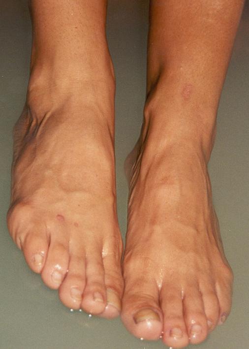 Sharon mitchell feet
