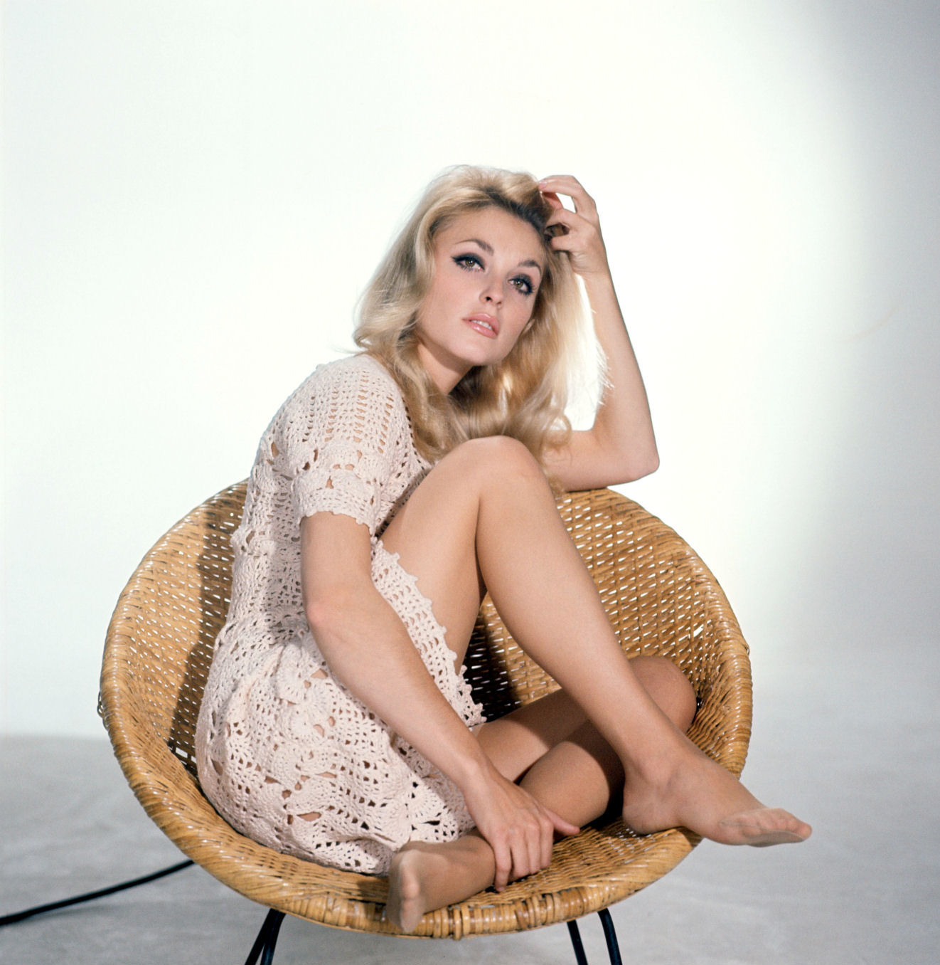 pictures star epic sharon tate   photo colection