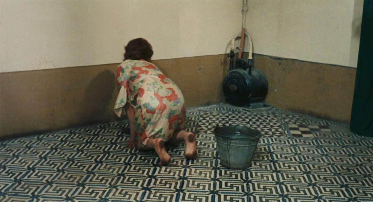 http://pics.wikifeet.com/Sophia-Loren-Feet-1802305.jpg