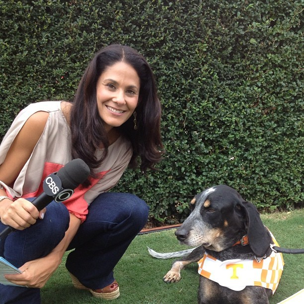 tracy wolfson images frompo