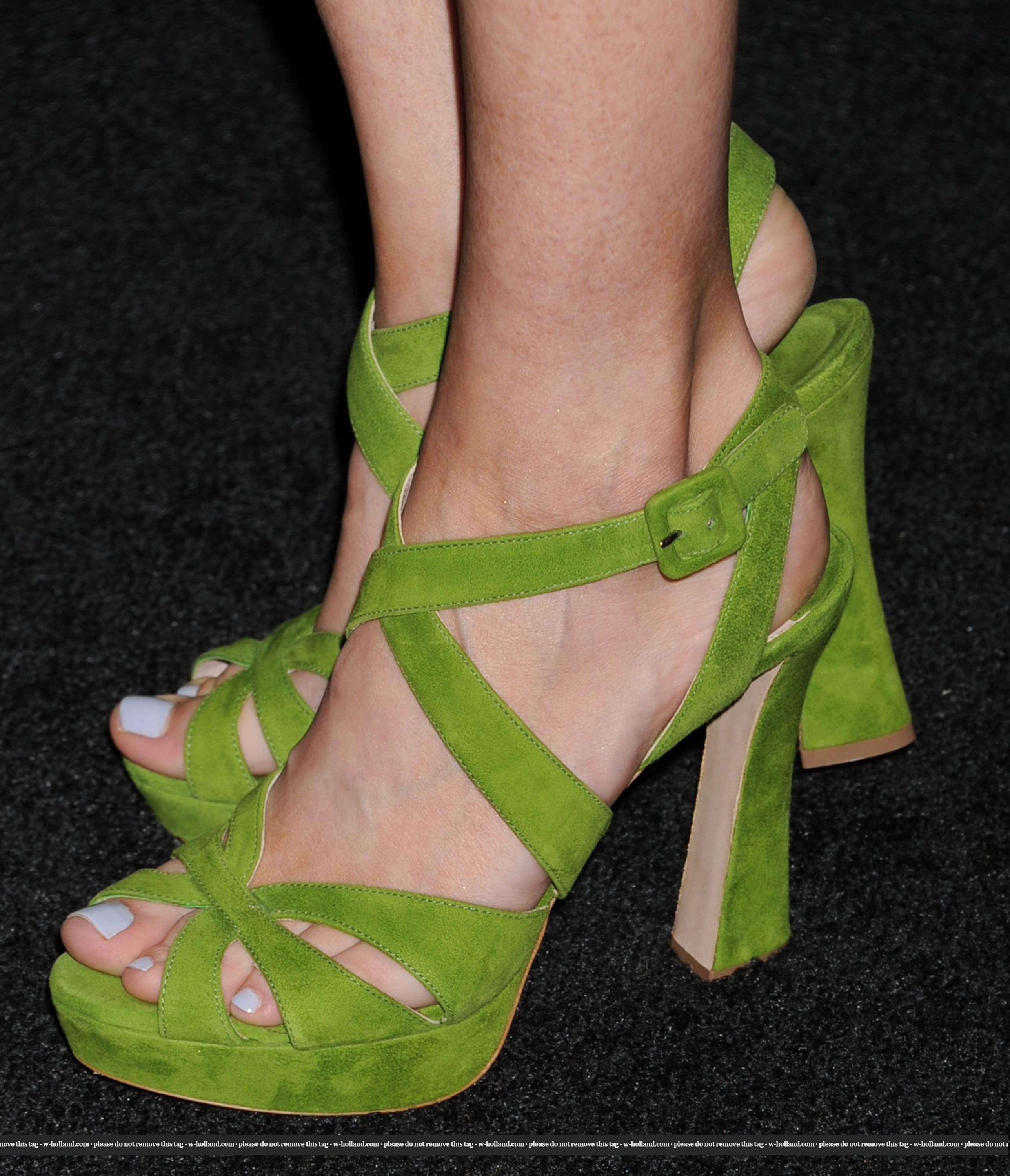 willa holland feet