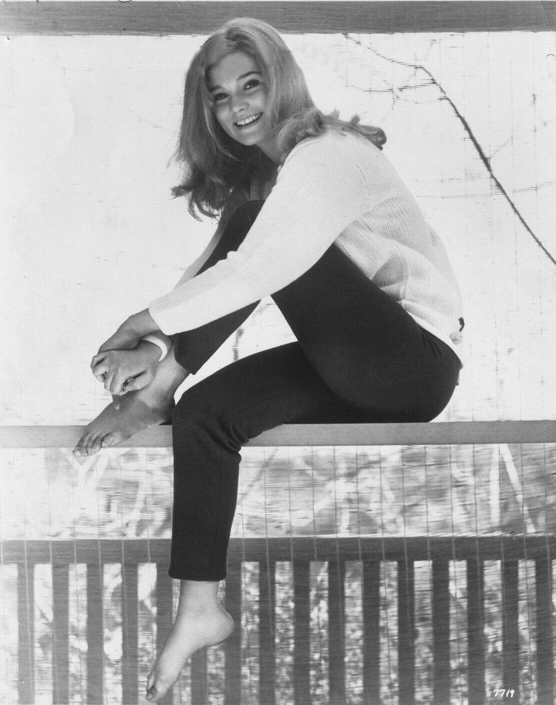https://pics.wikifeet.com/Yvette-Mimieux-Feet-4051435.jpg