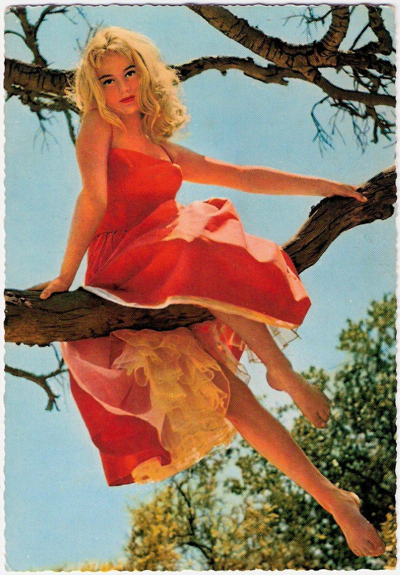 https://pics.wikifeet.com/Yvette-Mimieux-Feet-407966.jpg